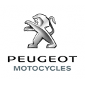 Kit chaine DID Peugeot