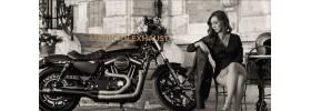 Echappement moto Mohican Harley davidson