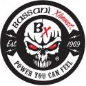 Echappement BASSANI XHAUST Yamaha